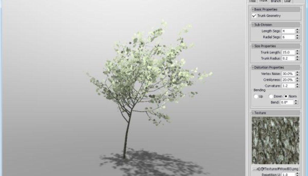 treed_001