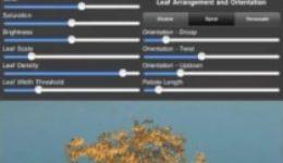 TreeSketch-210x279